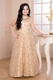 Picture of Good Looking Cream Color Net Gown