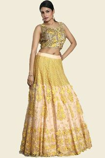 Picture of Prominent Beige & Mustrad Colored Embroidered Net Lehenga Choli