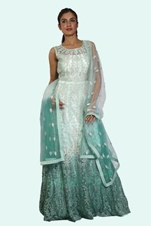 Picture of Glowing Shaded Pista Green Colored Partywear Embroidered Net Gown