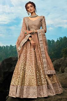 Picture of Pretty Brown Colored Lehenga Choli