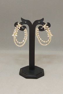 Picture of Regal stone worked designer earrings