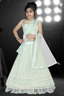 Picture of Partywear Pista Green Colored Net Designer Leheng Choli