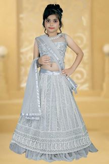 Picture of Partywear Grey Colored Net Designer Leheng Choli